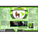 Alga Horse Immunité