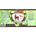 Alga Horse Seniors