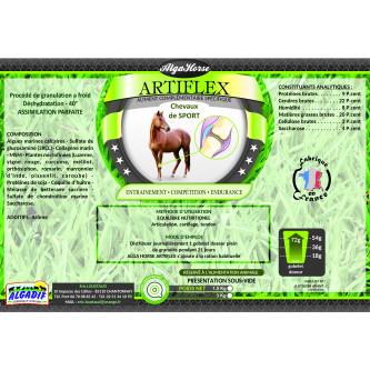 Alga Horse Artiflex
