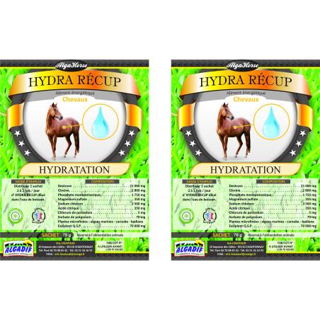 Alga Horse Hydra Recup
