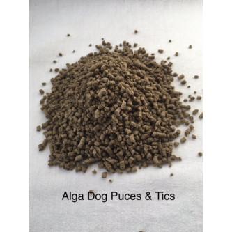 Alga Dog Puces&tics