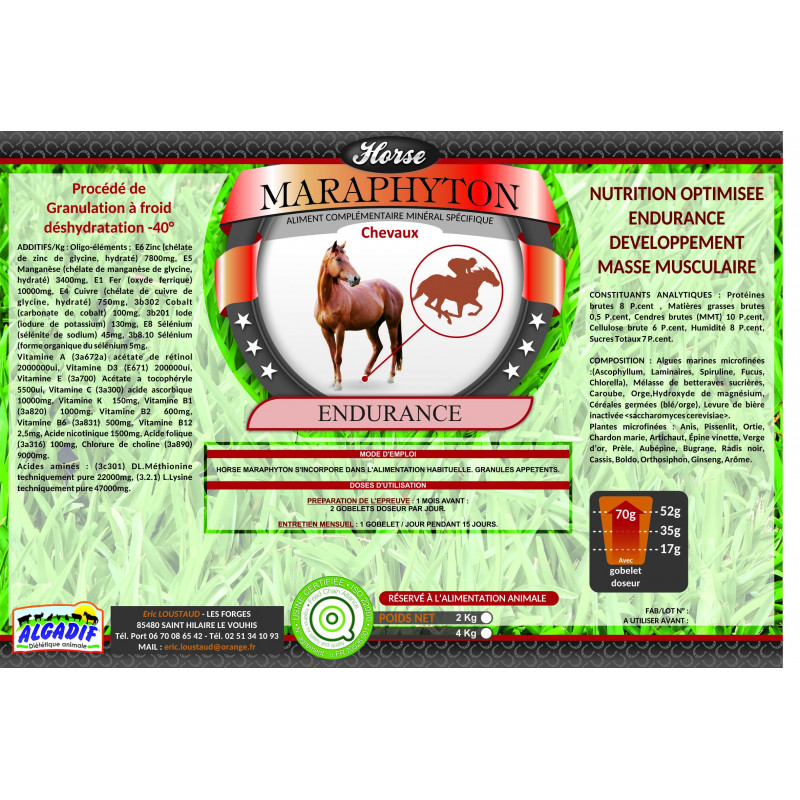 Horse Maraphyton